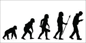 Human evolution - not