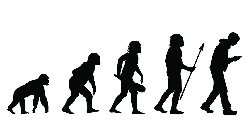 Human evolution - not