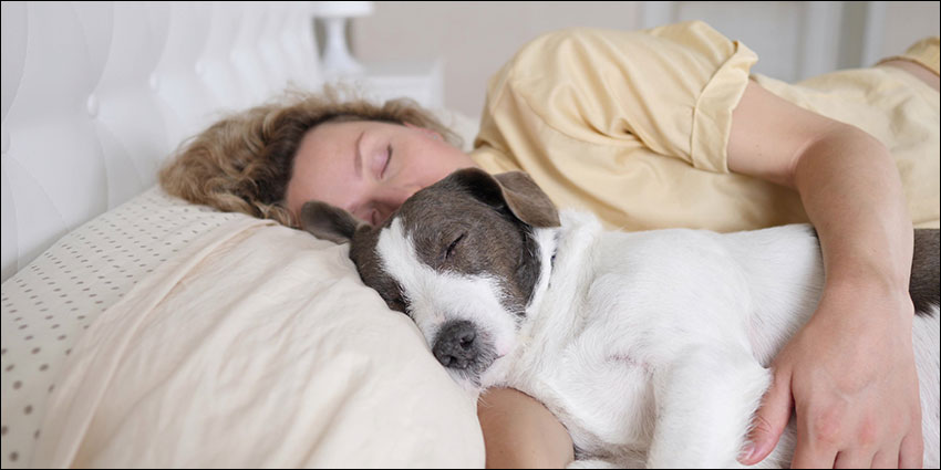 Sleeping with a pet