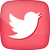 Social_icons - Twitter